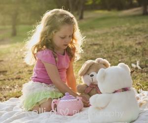 Teddy Bears Picnic-1