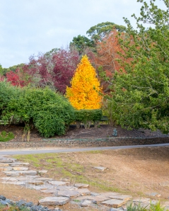 Autumn 2014-12