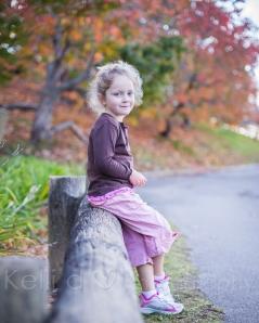 Autumn 2014-9